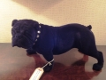 Black Flock Bulldog Figure with Diamonte Collar