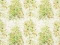 Lochwood 4133-01 Fabric